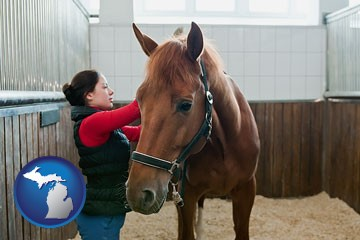 a horse and a horse owner in a boarding stable - with Michigan icon