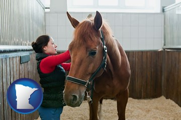 a horse and a horse owner in a boarding stable - with Minnesota icon