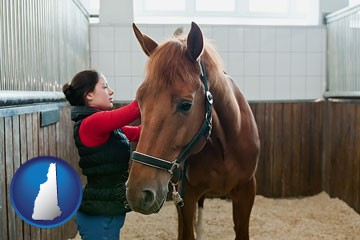 a horse and a horse owner in a boarding stable - with New Hampshire icon