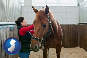 a horse and a horse owner in a boarding stable - with New Jersey icon