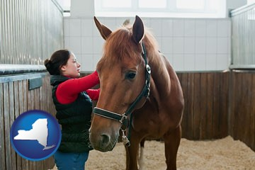 a horse and a horse owner in a boarding stable - with New York icon