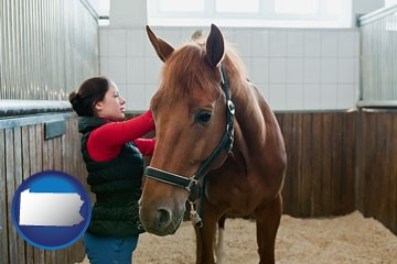 a horse and a horse owner in a boarding stable - with Pennsylvania icon
